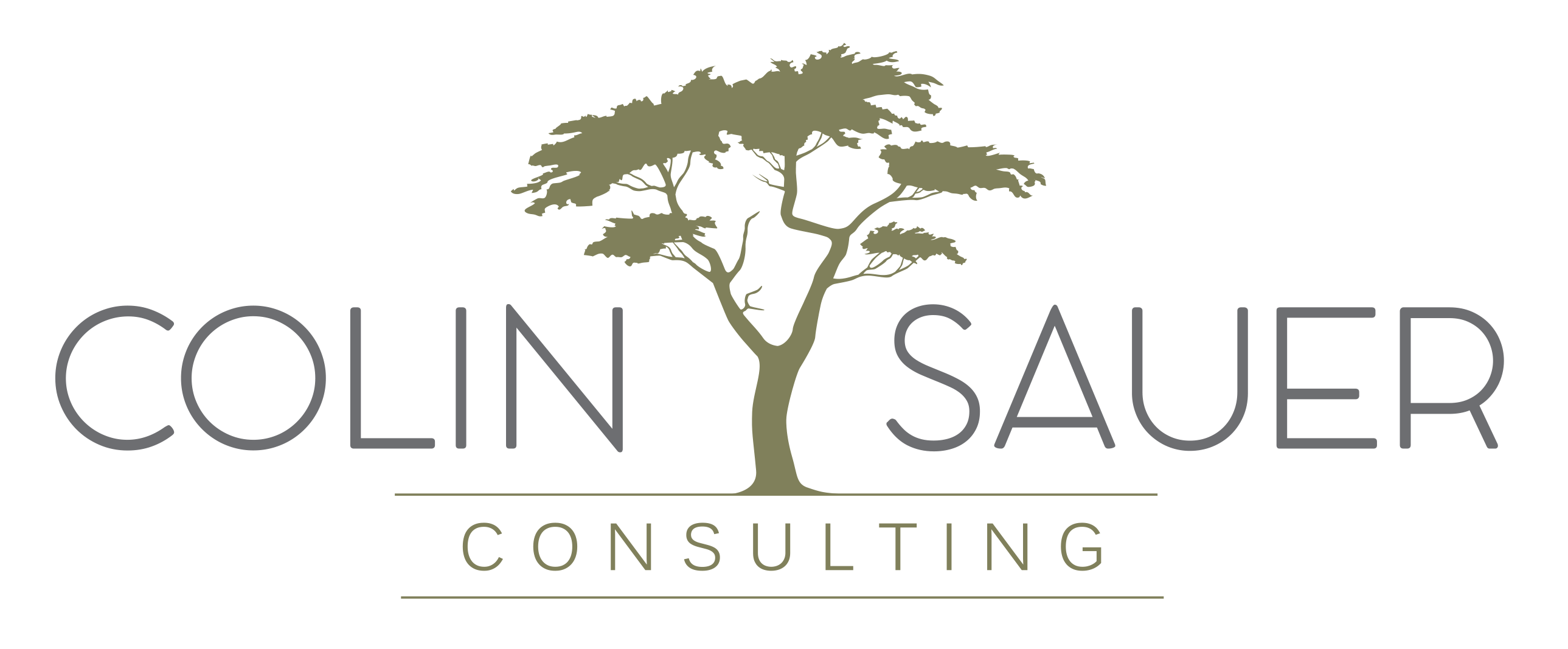 Colin-Sauer-Consulting