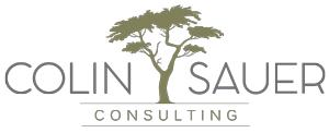 Colin Sauer Consulting